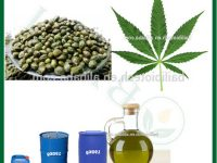 Netherlands wholesale suppliers of water soluble cbd with 0.3 thc